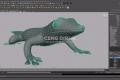 Madagascar Day Gecko - 3D Modeling